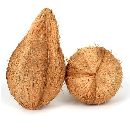 Fresho Coconut - Large, 1 pc (approx. 550g to 650g)