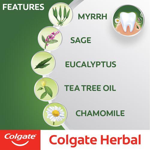 Colgate Toothpaste - Herbal, Anticavity, 100 g