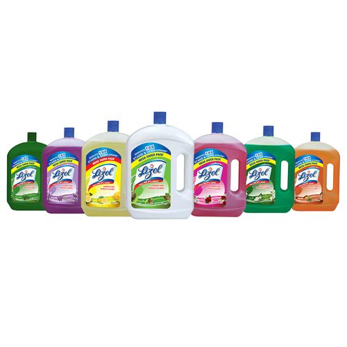 Buy Lizol Floor Cleaner Citrus 2x500 Ml Multi Pack