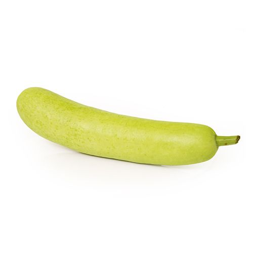 Fresho Bottle Gourd, 1 pc (Approx. 500 g - 800 g)