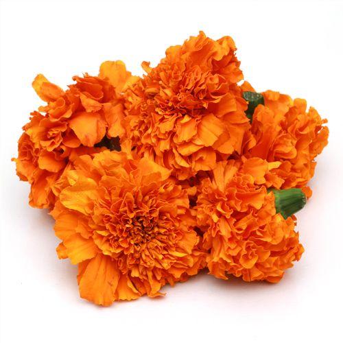 Fresho Marigold Flower - Orange, 100 g