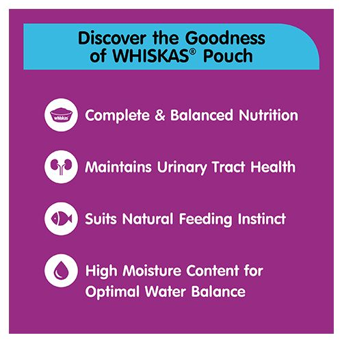 Whiskas Sample Pack -Whiskas Tuna in Jelly, Wet food for Kittens, 85 gm