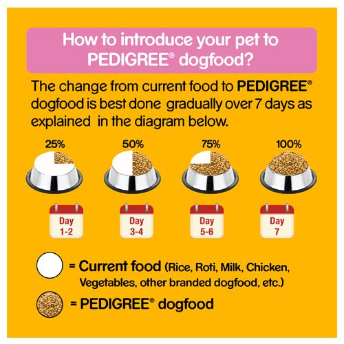 buy pedigree daily food for puppy chicken and milk 400 gm online at