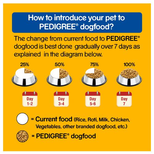Pedigree Dry Dog Food - Chicken & Vegetables, for Adult Dogs, 400 gm