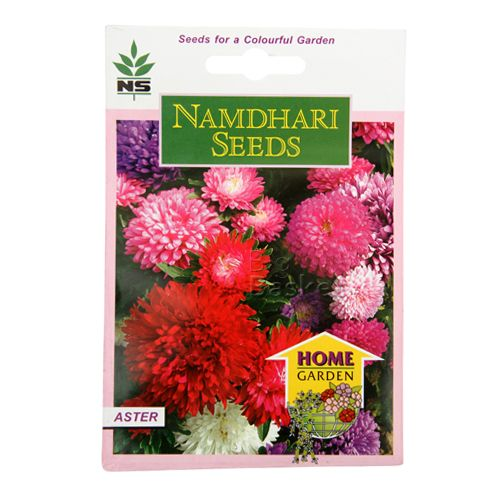 Namdhari Seeds Home Garden - Aster, 1 gm