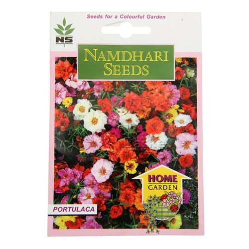 Namdhari Seeds Home Garden - Portulaca, 500 pcs