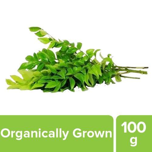 Fresho Curry Leaves - Organically Grown, 100 g