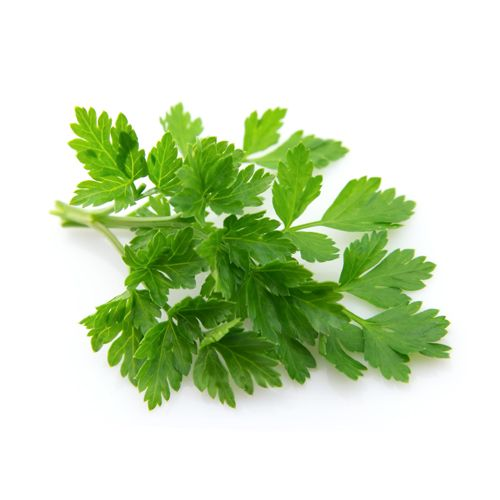 Fresho Parsley - Flat, 100 g