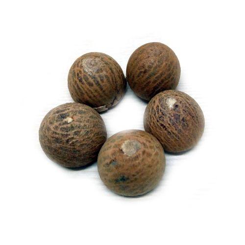 Fresho Betel Nut, 5 pcs