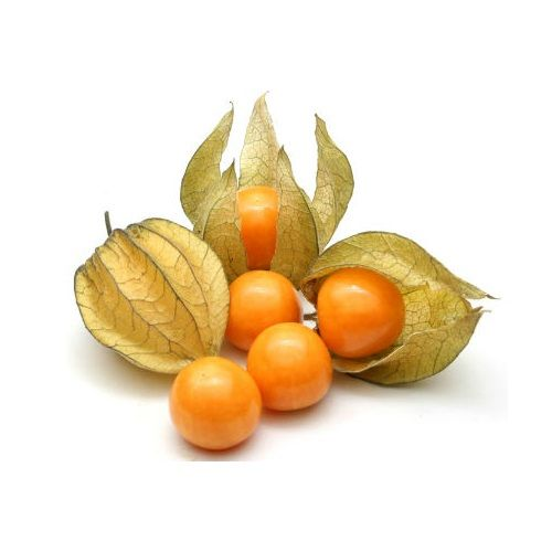 Fresho Cape Gooseberry, 500 gm