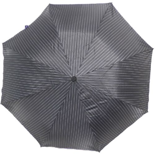 Agromech Super 2 Fold Umbrella Auto Lining & Piping - Violet, 24 inch