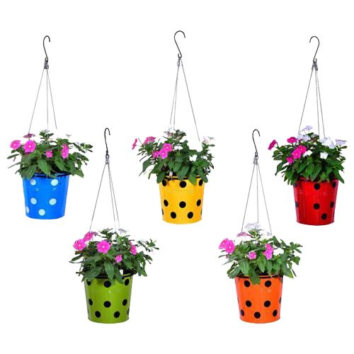 Trust Basket Planter - Dotted, Round, With Hanging Wire Rope, Blue, Yellow, Red, Green, Orange, 5 pcs