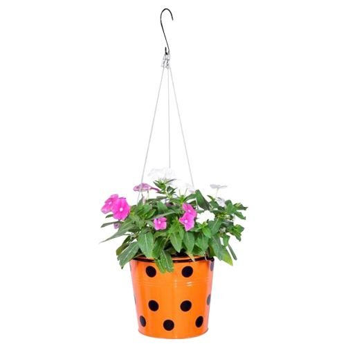 Trust Basket Planter - Dotted, Round, With Hanging Wire Rope, Orange, 1 pc