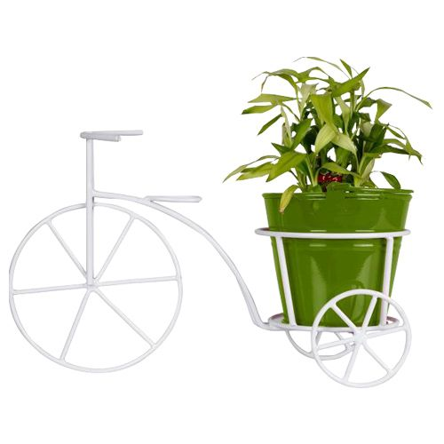 Trust Basket Bicycle - With Green Bucket Planter & Lucky Bamboo Plant, 1 pc