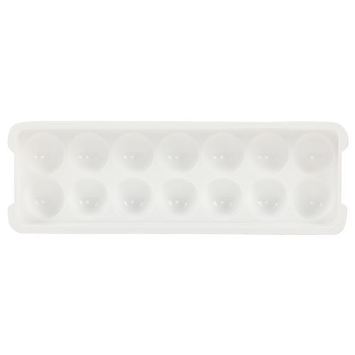 DP Ice Mould - Plastic, WhiteWhite BB 599, 1 pc