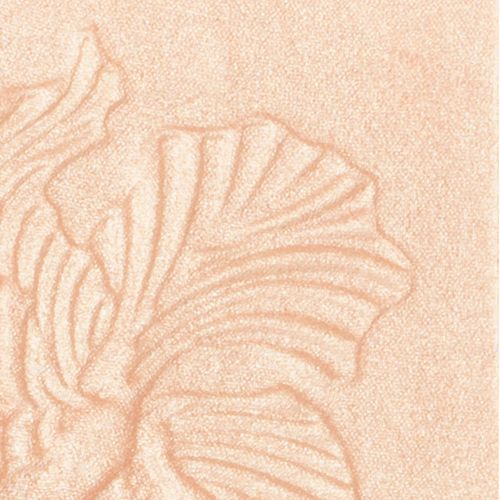 Wet N Wild Megaglo Highlighting Powder, 5.4 g Precious Petals