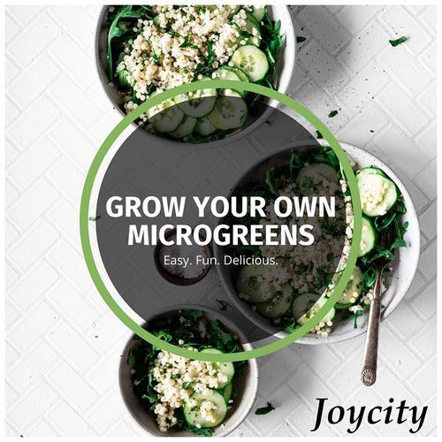 Joycity Beans Microgreens, 200+ Seeds