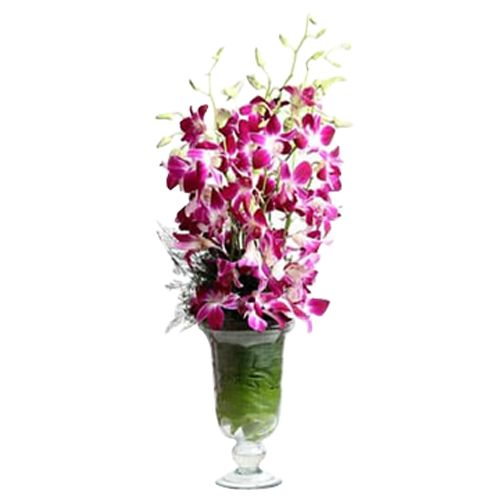 Ferns N Petals Pvt Ltd Flower Bouquet - Orchid Aura Standard, 400 g