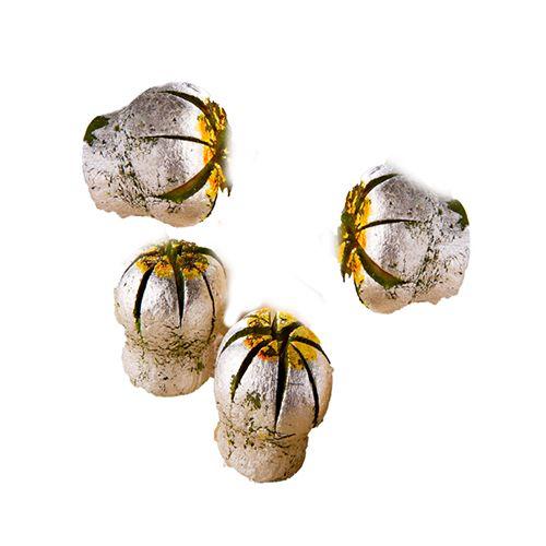 Dadus Sweets - Kaju Kusumkali, 500 g