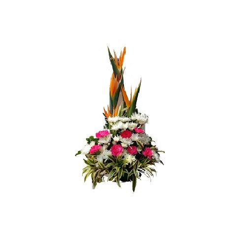 Blooms & Bouquets Flower 2 Bouquets - Angelwing, 1 pc