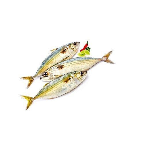 Fish & Chicken  Shopee Fish - Mackerel (Kanangeluthi), 500 g Uncut Cleaned