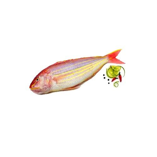 Fish & Chicken  Shopee Fish - Sea Sream (Sankara)  - Medium, 1 kg Fry Cut with slit Cleaned