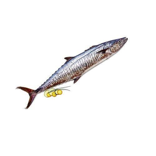 Fish & Chicken  Shopee Fish - Seer Fish (Vanjaram), 1 kg Thin Slice Cleaned