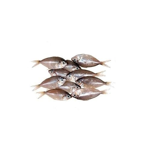 Fish & Chicken  Shopee Fish - White Fish(Sudhumbu), 1 kg Fry Cut Cleaned