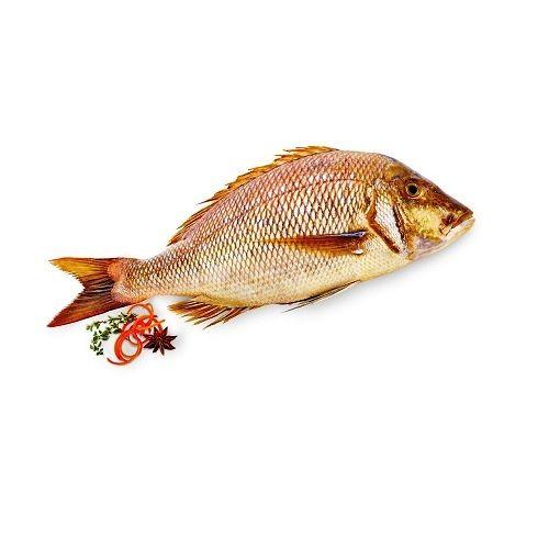 Fish & Chicken  Shopee Fish - Emperor(villai meen), 1 kg Gravy Cut Cleaned