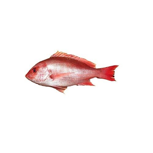 Test Fish O' Fish Fish - Pink perch - Sankara, 1 kg Cube Cut Cleaned