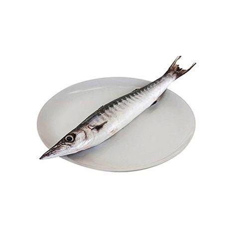 Test Fish O' Fish Fish - Barracuda - Sheela, 1 kg Gravy cut Cleaned