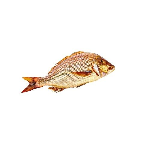 Test Fish O' Fish Fish - Emperor Fish, 1 kg Fry cut Cleaned