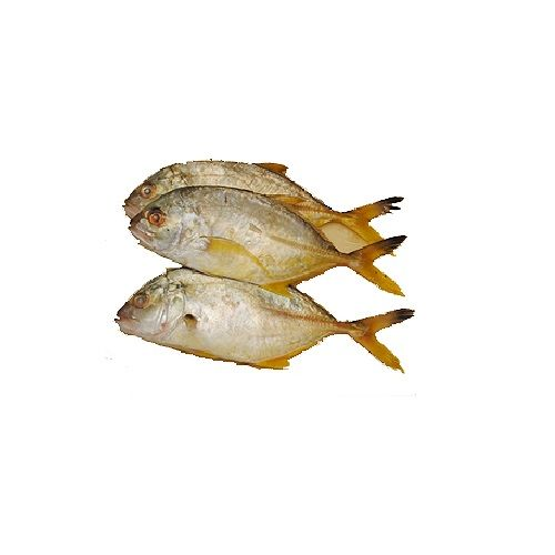 Jk Fish Fish - Trevally Fish - Parai - 1kg, 1 kg Gravy Cut Cleaned