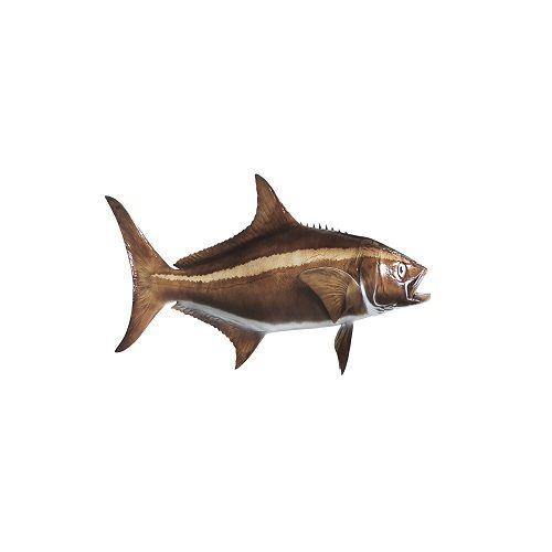 SAK Proteins Fish - Kadal Viral / Cobia, 1 kg Curry cut