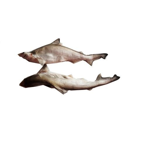 Crazy Fish Fish - Sura / Shark, 1 kg Gravy cut