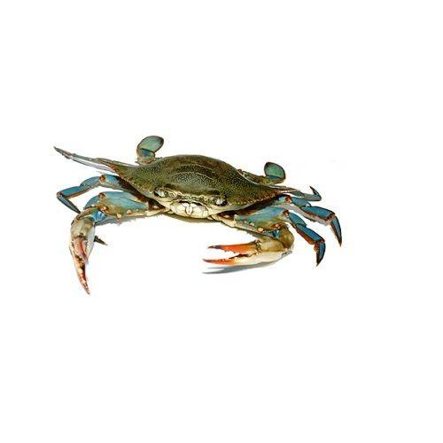 Crazy Fish Crab - Neela Nandu / Blue, 1 kg Fry cut