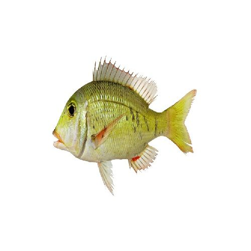 SAK Proteins Fish - Emperor Small, 1 kg