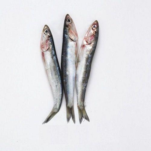 SAK Proteins Fish - Netholi Small, 500 g