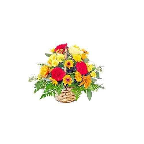 Blooms & Bouquets Flower Bouquet - Tropical Bloom, 1 pc