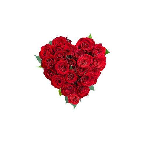 Blooms & Bouquets Flower Bouquet - Scarlet White Wonder, 1 pc