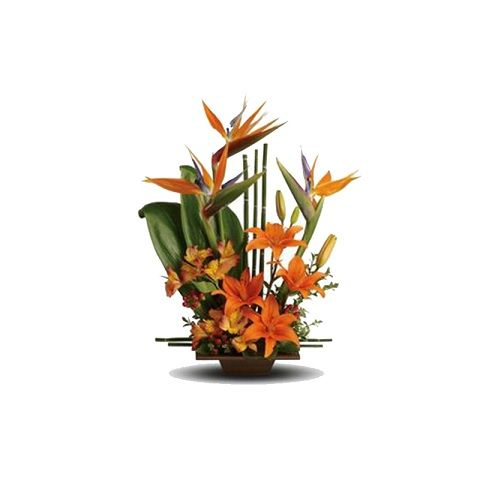 Blooms & Bouquets Flower Bouquet - Oriental Odyssey, 1 pc