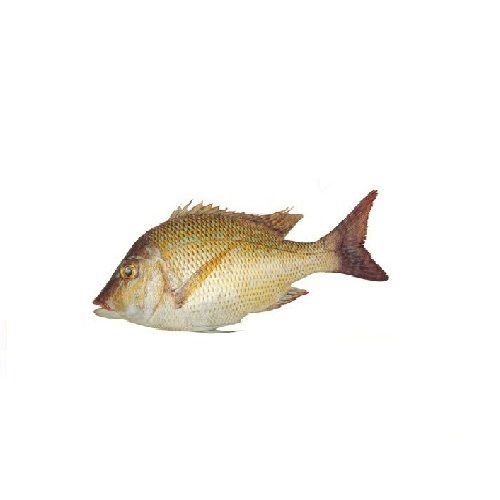 New Fish n Fresh Fish - Emperor / Vilai Meen, 300 g