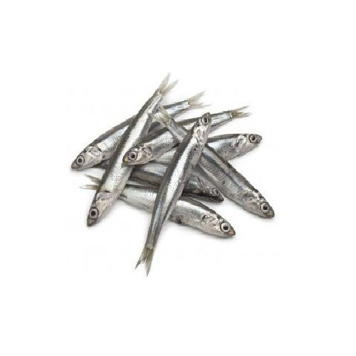 New Fish n Fresh Fish - Nethili / Anchovy, 1 kg