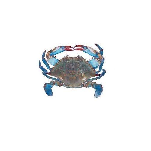 JB Seafoods Crab - Blue, 1 kg
