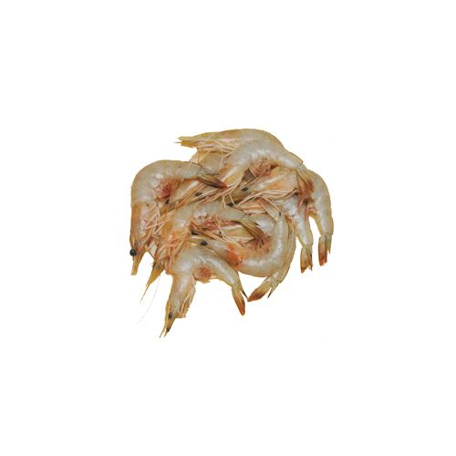 JB Seafoods Prawn - White, Medium / Vellai Eral, 500 g