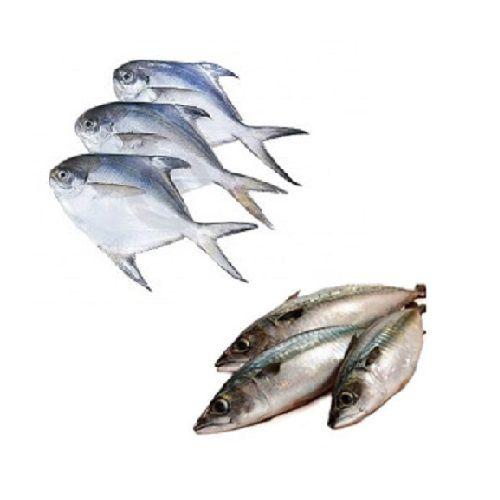 Fiska.in Combo - Pomfret 3Pc & Bangda Cleaned, 1 kg