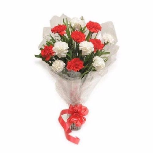 BLOOMS AND BOUQUETS Flower Bouquet - 6 Red and 6 White Carnations, 1 pc Paper Packing
