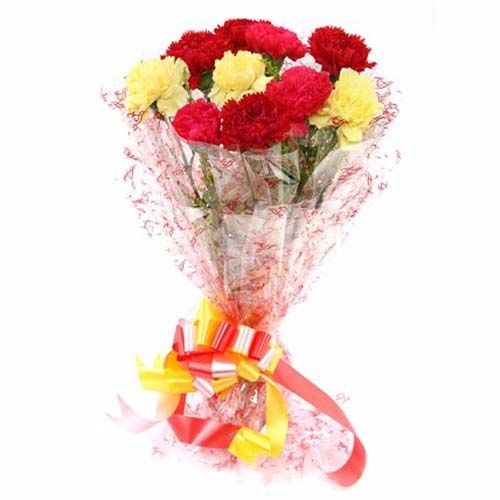 BLOOMS AND BOUQUETS Flower Bouquet - 12 Mixed Carnations, 1 pc Cellophane