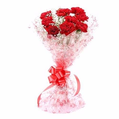 BLOOMS AND BOUQUETS Flower Bouquet - 12 Red Carnations, 1 pc Paper Packing