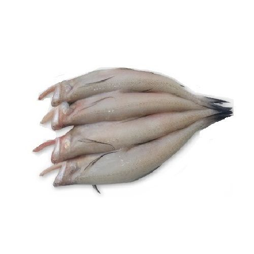 Seavoods Fish Point Fish - Bombil / Bombay Duck, 500 g Tray